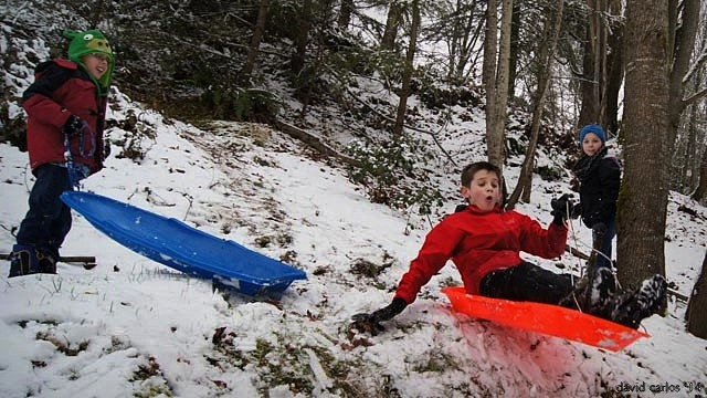 From David Carlos, children sledding Sunday at Terrace Creek Park.
