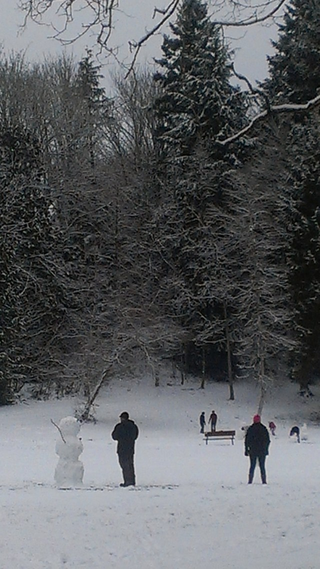 Terrace Creek Park became a winter wonderland Sunday morning after an overnight snowfall.