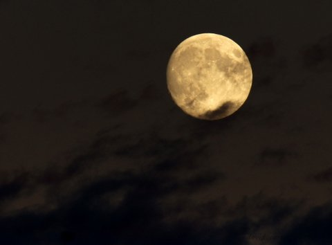 Photographer David Carlos captured this shot of the moon in Mountlake Terrace.