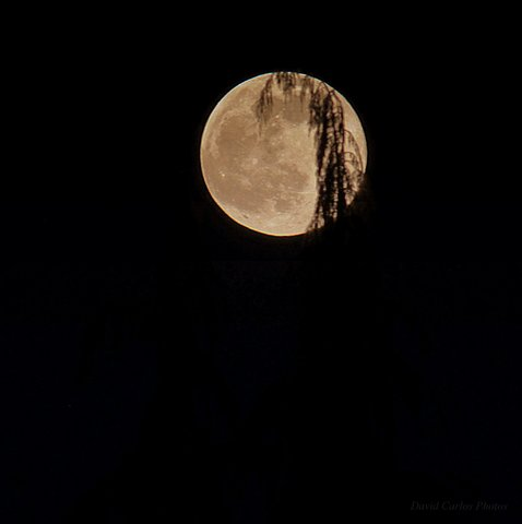 The moon as seen by photographer David Carlos on Sunday night.