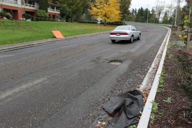 Continuing work on the repaving of Lakeview Drive from 65th Place West to Ballinger Park in Mountlake Terrace will wait until there is a sufficient weather window, possibly taking the project into November.