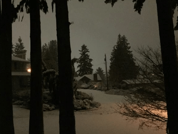 This photo was taken on the Edmonds side of Lake Ballinger, showing the first snow of the season. Higher temperatures and rain are predicted for Friday.