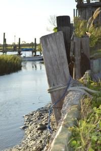 Pilings at Low Tide