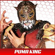 Puma King.png