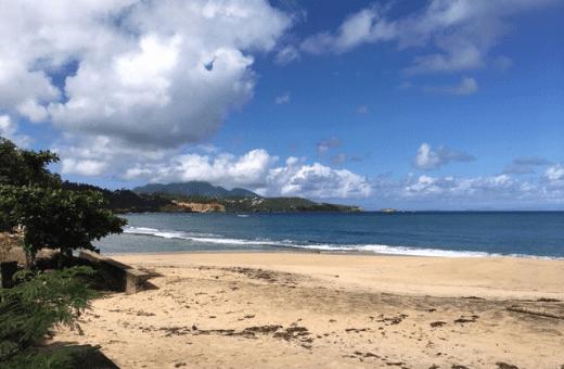 voyage île Dominique : plage de Batibou