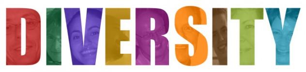 Diversity Logo quer 699px