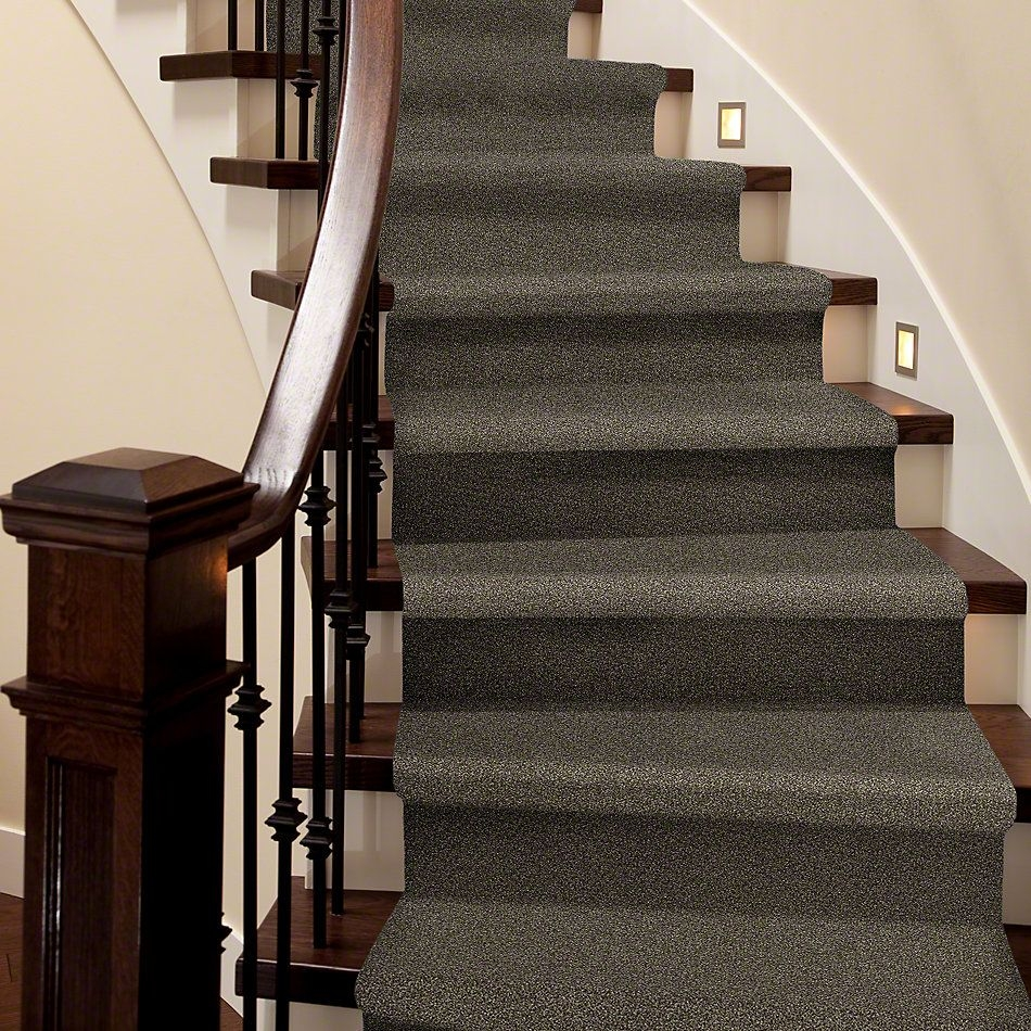 Shop Shaw Floors Bellera Just A Hint I Mink 00701 E9640 Carpet   Mink Carpet On Stairs   Design   Step   Grey   Open Plan   Taupe Painted
