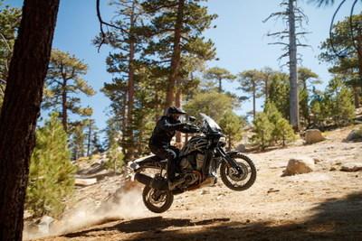 Harley Davidson Pan America Action