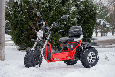 """The BoomerBeast D is designed for everyday commuting on the streets as well as for rough off-road trails and terrain. The 10"""" wheels allow riders to handle a variety of surfaces such as dirt, dry sand, and light snow with ease."""