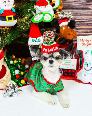 What Kind Of Dog Is In The Petsmart Commercial 2020 : petsmart, commercial, PetSmart, Celebrates, Season, Spoiling™, Virtual, Santa, Photos, Sweepstakes