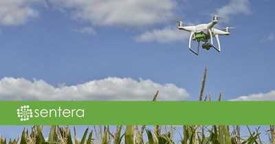 Sentera's Double 4K Sensor for DJI Phantom 4 series features fully customizable filters, offering ag professionals additional affordable late-season data capture options