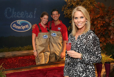 LOS ANGELES, CA - SEPTEMBER 14: Cheryl Hines attends Kari Feinstein's Style Lounge presented by Ocean Spray at the Andaz Hotel on September 14, 2017 in Los Angeles, California. (Photo by Rebecca Sapp/WireImage)
