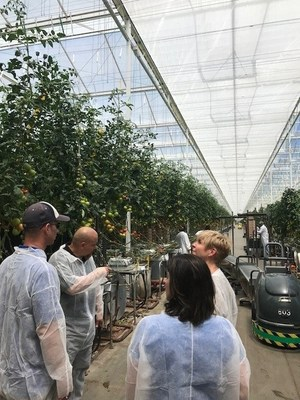 Representatives from Houweling's Tomatoes show SoCalGas leadership the new greenhouse thermal curtain system, designed to reduce heat loss at night, was purchased in part with a $176,000 rebate check through SoCalGas' Energy Efficiency Rebates for Businesses (EERB) program.