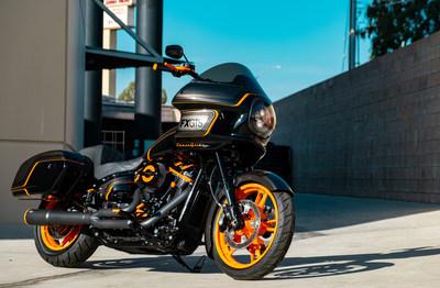 Laidlaw's Harley-Davidson CoastGlide