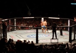 Chris_Weidman_knock_out_Anderson_Silva_at_UFC_162.