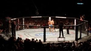 Chris_Weidman_knock_out_Anderson_Silva_at_UFC_162.