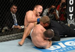 UFC Fight Night: Palhares v Pierce