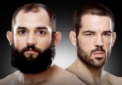 johny-hendricks-matt-brown-poster