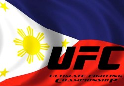 ufc flag