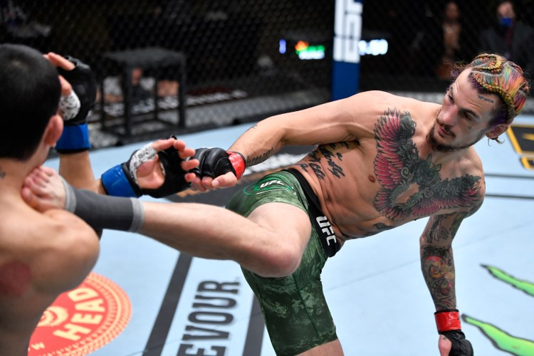 O'Malley rose to the occasion against former hot prospect, Thomas Almeida, with a thumping third round stoppage   O'Malley vs Moutinho