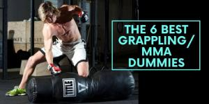 The 6 Best Grappling/MMA Dummies