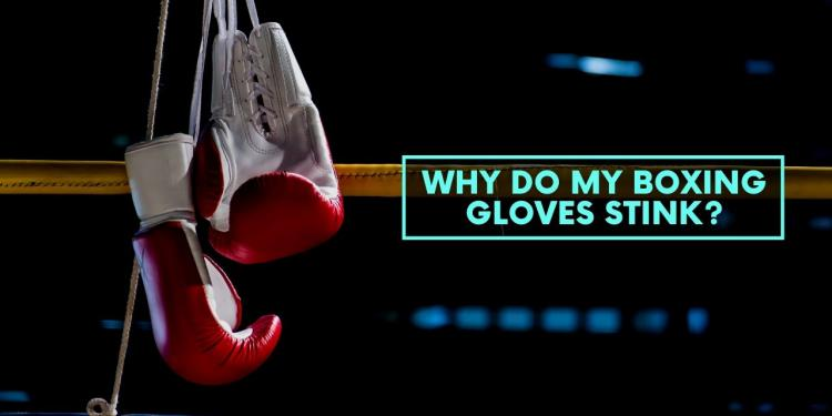 Why Do My Boxing Gloves Stink?