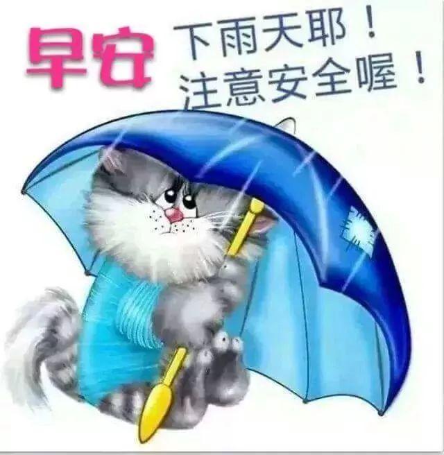 下雨天祝福早上好经典动态图片祝福语图片