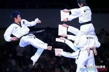 跆拳道特技視頻 _網絡排行榜