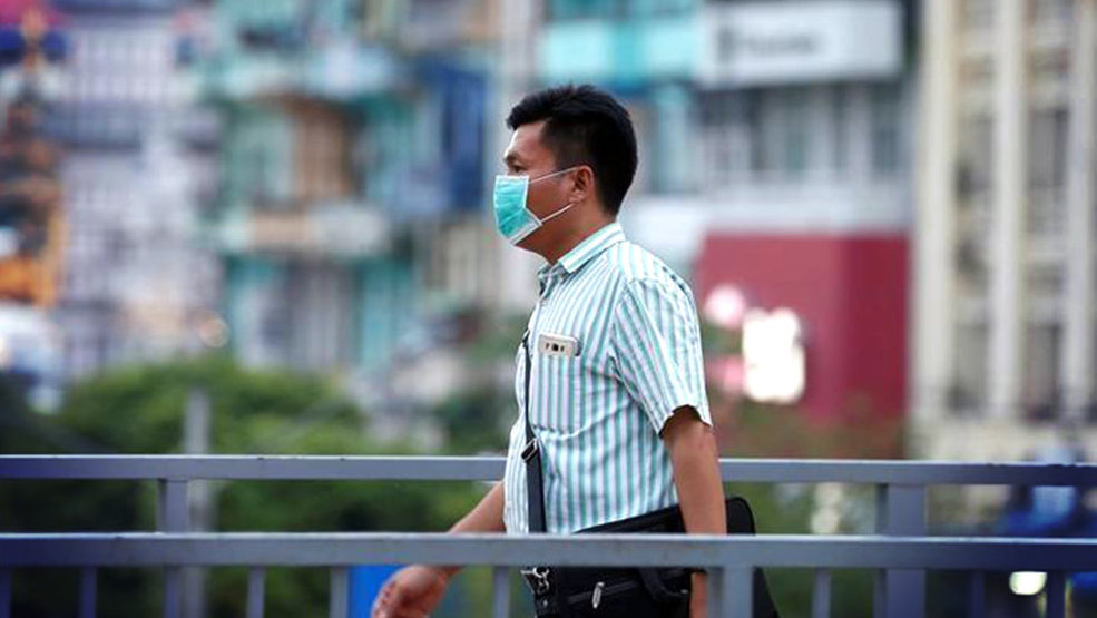 Flu Babi atau Swine Flu dan Bagaimana Penularannya pada Manusia ...