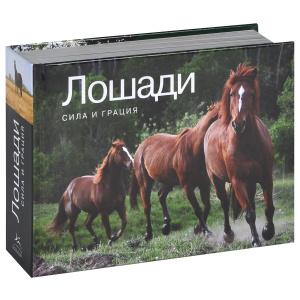 "Книга ""Лошади. Сила и грация"" - купить книгу Horses: A Photographic Velebration ISBN 978-5-389-05622-0 с доставкой по почте в интернет-магазине Ozon.ru"