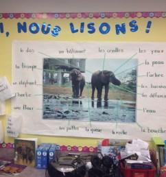 Language Inquiry in a Grade 2/3 split – Mme G.C. -Work in Progress [ 2448 x 3264 Pixel ]