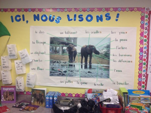 small resolution of Language Inquiry in a Grade 2/3 split – Mme G.C. -Work in Progress