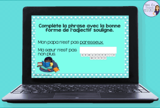 French-adjectives-task-cards
