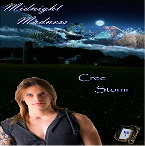 Midnight Madness by Cree Storm
