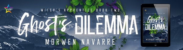 Ghost's Dilemma by Morwen Navarre (2nd edition)