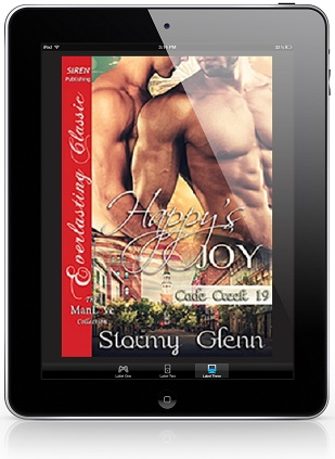 Happy's Joy by Stormy Glenn