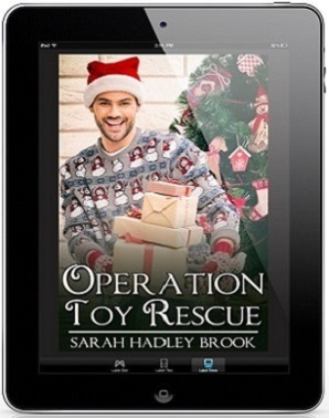 Operation Toy Rescue by Sarah Hadley Brook