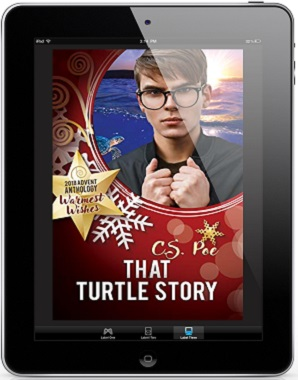 That Turtle Story by C.S. Poe