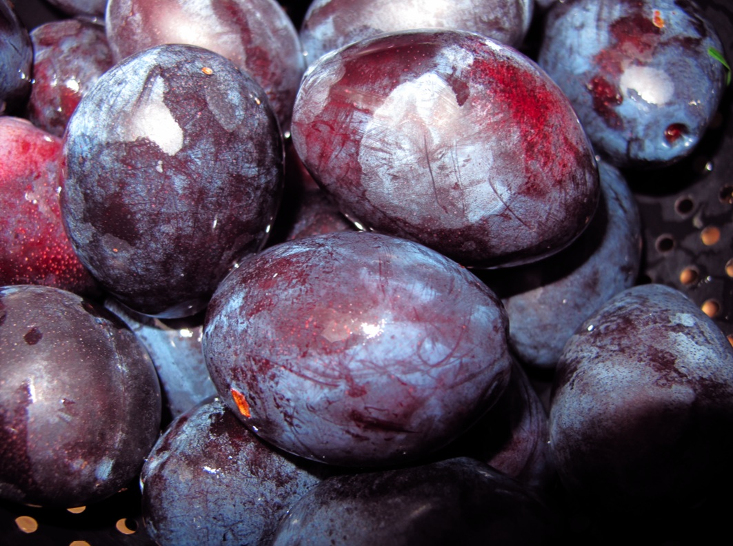 Plums for Plum Cake