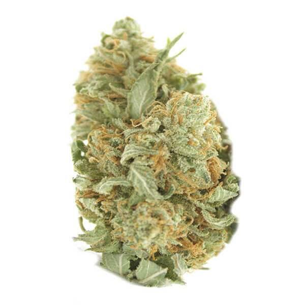 Blueberry Kush - Indica dominant