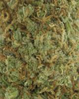 Sweet Tooth - sativa dominant