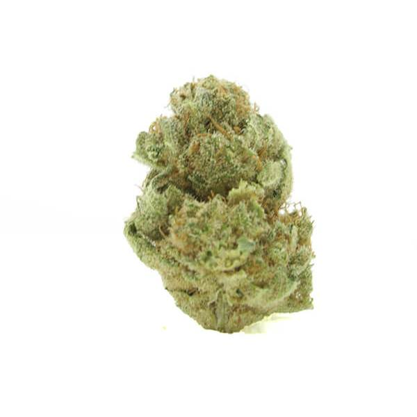 Pennywise - High CBD indica