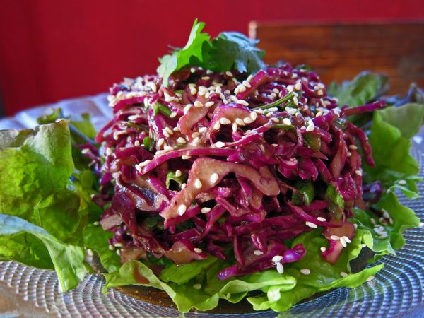 grill kitchen garbage bags mmm-yoso!!!: purple cabbage slaw with sesame dressing