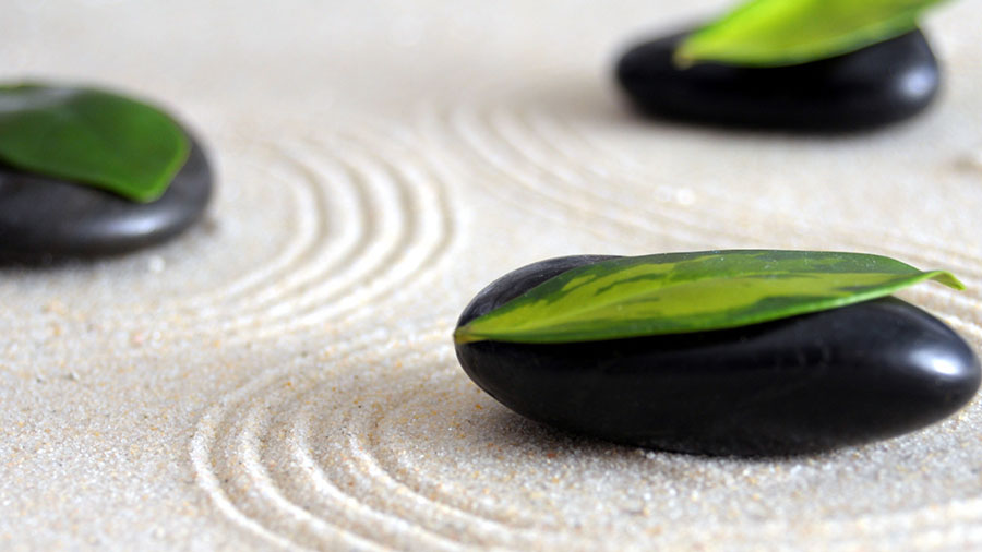 What Are The Key Elements Of A Japanese Zen Garden Design Mmminimal