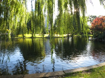 the most beautiful time of the afternoon at a most beautiful park, Boston Public Garden