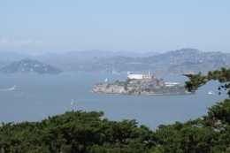 Alcatraz! I climbed a million steps for this view.