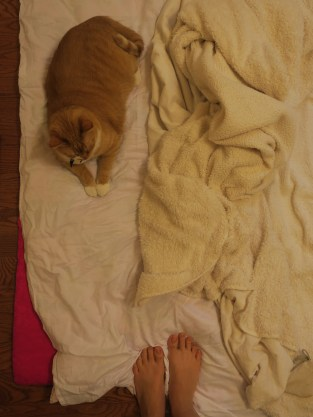 Binky and the Blankets