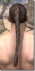 Braided Ponytail 3