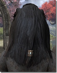 Long Foregathered Mane 3