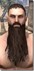 Long Patriarch Beard
